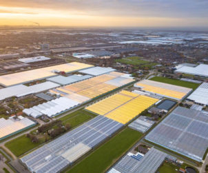 Autogrow expands into Europe with new role and new farm solutions